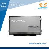 11.6 '' Afficheurs LED d'ordinateur portatif de Pin de Lvds 40 de module de l'affichage à cristaux liquides 1366*768 pour B116xw02 V1