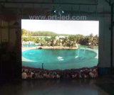 Bewegliche Innen-Bildschirmanzeige LED-P2.5 mit Panel druckgießende 480X480mm