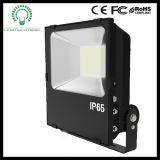 Lifud 운전사를 가진 공장 가격 50W LED 스포트라이트 또는 투광램프