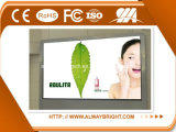 Индикация СИД панели экрана видеоего полного цвета Abt P5 HD