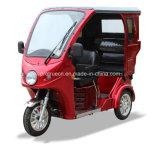 Nuevo triciclo Handicapped para el grupo lisiado con la portada (DTR-14B)