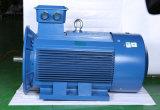 Качество фабрики Китая хорошее трехфазных электрических двигателей для редуктора для сбывания