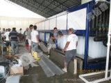 Peixes de Focusun que refrigeram o fabricante de gelo do bloco 10ton