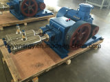 중간 Pressure 및 Large Flow Nitrogen Oxygen Argon Vacuum Piston Pump