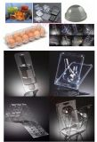 De beste Container die van het Ei van de Prijs Automatische Plastic Machine vormt