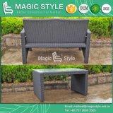 Del sofà semplice del rattan del Hq 100 Sets/40 il sofà stabilito del patio di smontaggio Kd ha impostato (stile magico)