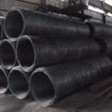 Tige de fil d'acier pour la fabrication des ongles à froid et matériaux de construction (SAE1006 SAE1008)