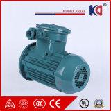 Motore protetto contro le esplosioni di ventilazione di serie Yb3