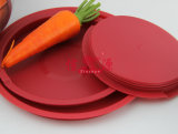 Salada inoxidável Basin de Steel com Silica Gel Bottom (FT-1216)