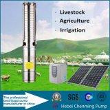 Bomba de agua solar sin escobillas del jardín respetuoso del medio ambiente que bombea sistemas