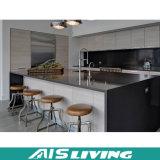 Doppia mobilia su ordine degli armadi da cucina di disegno di colore (AIS-K125)