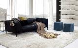Sofá de couro de três assentos para a casa usada (SF1070)