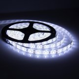SMD LED Strip 5050 30/60LEDs/M Flexible LED Strip Light Waterproof와 Non-Waterproof