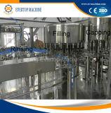 Het Vullen van het Mineraalwater van de fles Machine