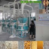아프리카 50t Per Day Maize Flour Mill Equipment