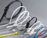 Haitai Plastikkabelbinder des nylon-66 selbstsichernd