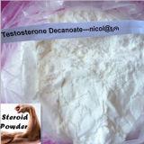 Het Testosteron Decanoate van Decanoate van het Testosteron van het Poeder van Decanoate van het testosteron