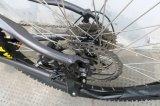 Bicicleta elétrica para países de Europa América Oceania
