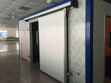 Puerta deslizante del sitio de conservación en cámara frigorífica del alimento del almacén