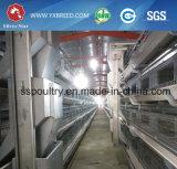 Galvanizado en caliente jaula de Agricultura (A-3L90)