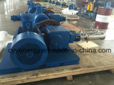 중간 Pressure 및 Large Flow Oxygen Nitrogen Argon Vacuum Piston Pump