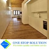 Nuovo bianco 2PAC con l'armadietto degli armadi da cucina di rivestimento dell'impiallacciatura (ZY 1121)
