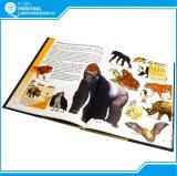 Servizio di stampa del libro infantile della graffetta