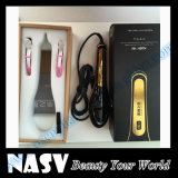 LCD Hair Straightener Brush를 가진 전문가