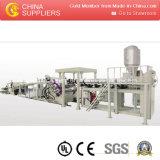 Chaîne de production d'extrusion de feuille de la qualité PP/PE/PS