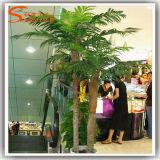 Пальма стеклоткани Китая оптовой Silk подгонянная пальмой искусственная