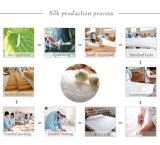 絹のHotsale Oeko-Texの品質の100%年のクワ絹の慰める人の絹のキルト