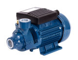 Qualität Surface Domestic Peripheral Water Pump mit CER (QB-60)