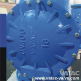 鋳造物かDuctile Iron Flexible Disc Swing Check Valve