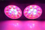 3W 칩 빨간 파랑 LED는 수경법 시스템 플랜트 점화를 위한 램프 90W를 증가한다