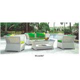 Muebles del jardín de los bistros de la rota del PE para la promoción