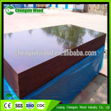 Finger Joint Core 18mm Brown Film fait face à Plywoo De Linqing Chengxin Wood