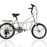 Populäre Kohlenstoffstahl-Rahmen-Kinder/Kursteilnehmer/erwachsenes Fahrrad (NB-009)
