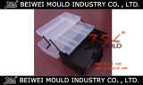 Einspritzung-Plastikwerkzeugausstattung-Kasten-Form