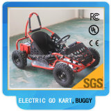 48V de elektrische Jonge geitjes die Met fouten van het Go-kart gaan Kar voor Verkoop rennen