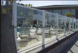 Clôture de jardin de panneau en verre durci/Tempered/frontière de sécurité