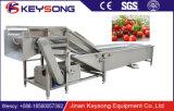 máquina de lavar de alta pressão automática industrial do vegetal da bolha