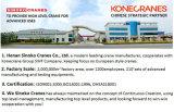 Фабрика Maufacturer крана поднимаясь оборудования веревочки провода 10 тонн электрическая