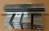 튼튼한 최신 판매 주문 금속 장식적인 N 유형 물림쇠