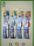 Doppia bolla con la scheda lucida con il Toothbrush dell'adulto della protezione
