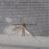 14*14 شبكة بيضاء لون [فيبرغلسّ] نافذة شاشة