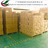 Custos de transporte padrão que transportam o frete de oceano do navio do mar de Guangzhou China a Indonésia