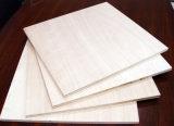 商業合板の家具の合板のパッキング合板