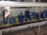 Motor del motor del motor 315 del motor Hydraulic/OMR del OMR 315 mini/del excavador de China