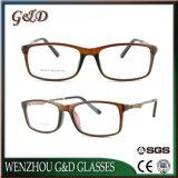 Optische Frame van het Oogglas Eyewear van Ultem van de manier het Plastic met Tempel e014-1 van het Aluminium