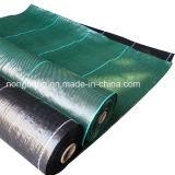 緑の黒いカラー沈泥の塀